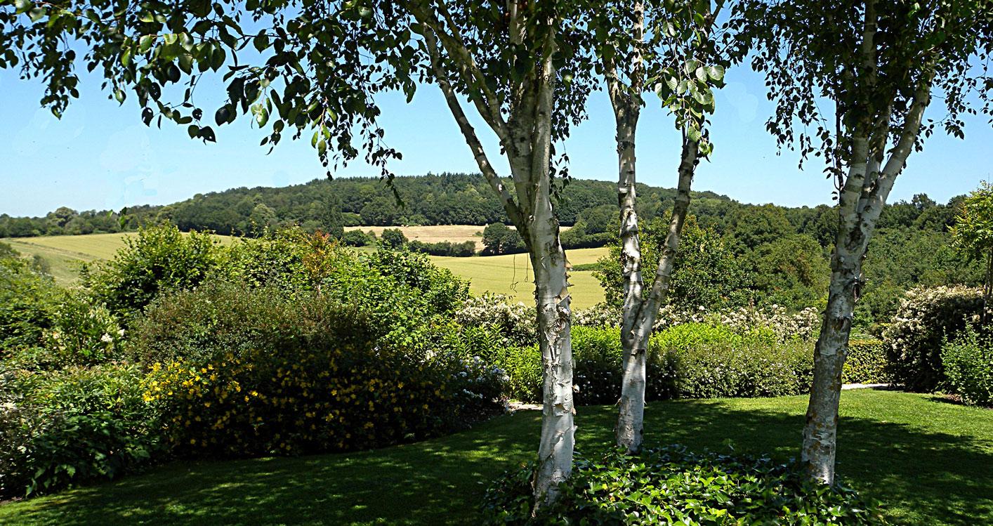 dp-63-Le-Grand-Bois-du-Perche-05